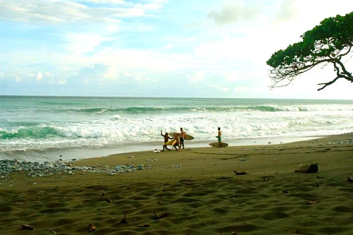 Matapalo Costa Rica Surf Osa PEninsula