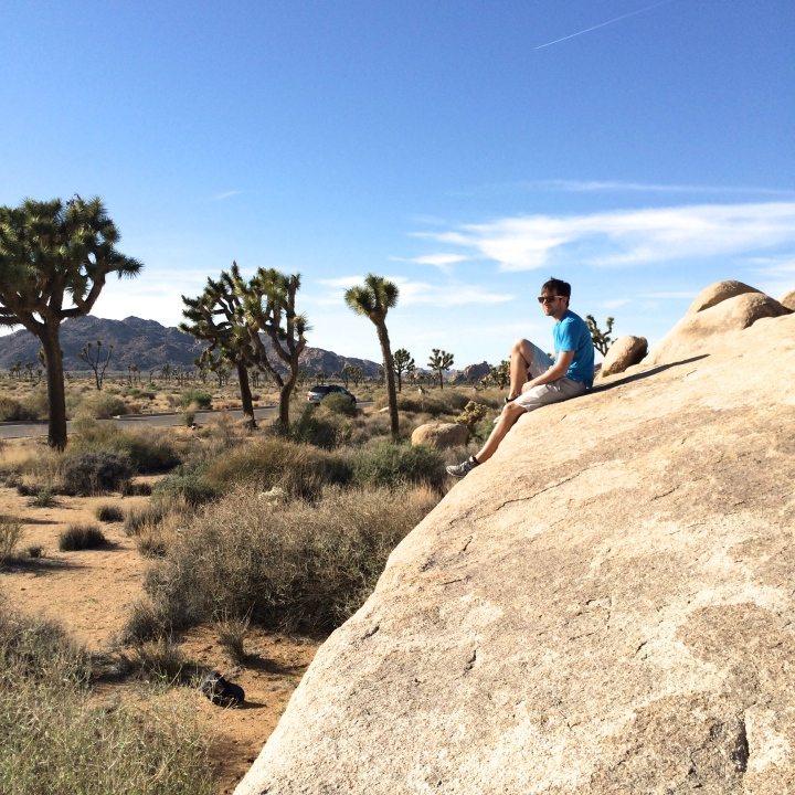 Adam Joshua Tree Cap Rock