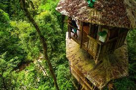 Finca Bella Vista Costa Rica Golfito Valentina Rose Travel Blog