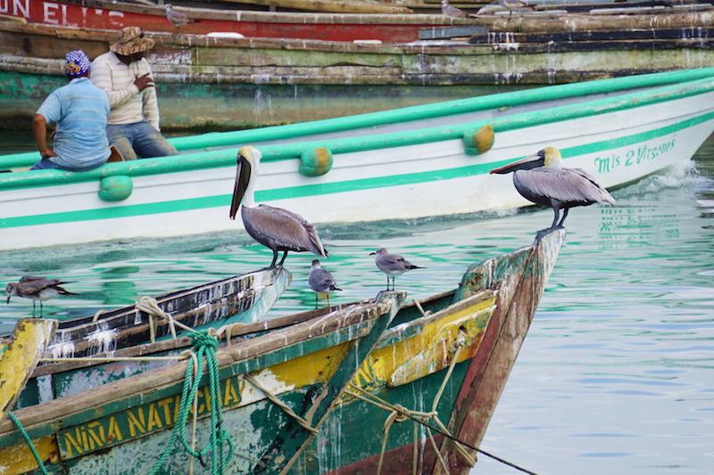 Panama Boats Panama Happy New You! 2017 Cambutal Sansara Yoga and Spa .jpg