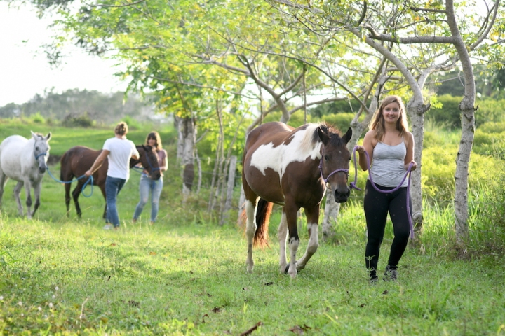 Horse Therapy Costa Rica Osa Peninsula New Year's Eve Yoga Retreat Rach Girl Tour