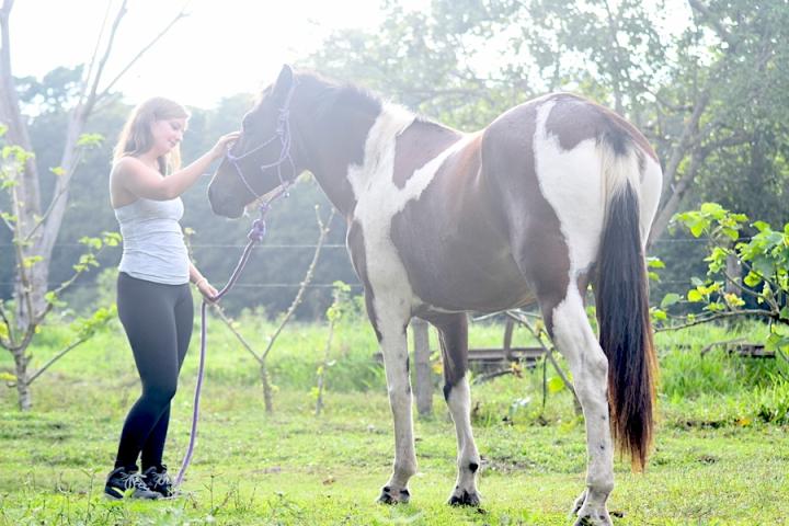 Horse Therapy Costa Rica Osa Peninsula New Year's Eve Yoga Retreat Alicia