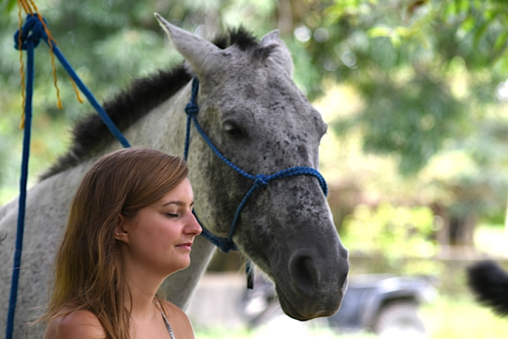 Horse Therapy Costa Rica Osa Peninsula New Year's Eve Yoga Retreat Horse Connection