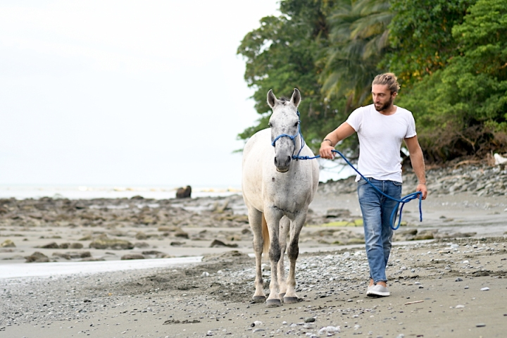Horse Therapy Costa Rica Osa Peninsula New Year's Eve Yoga Retreat Luca Beach