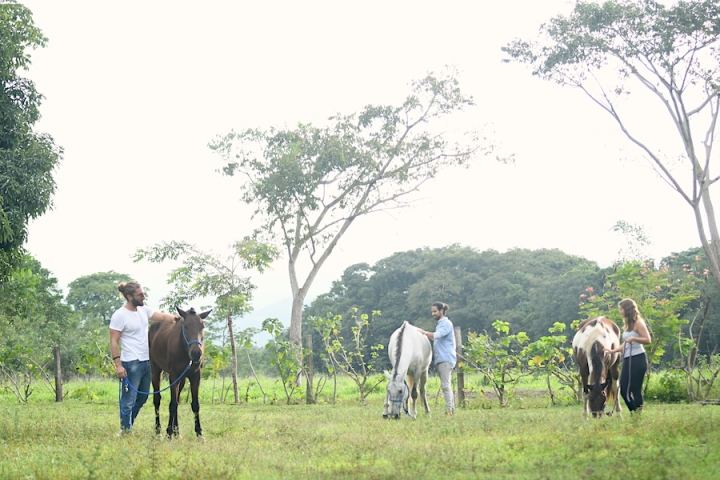 Horse Therapy Costa Rica Osa Peninsula New Year's Eve Yoga Retreat Three People