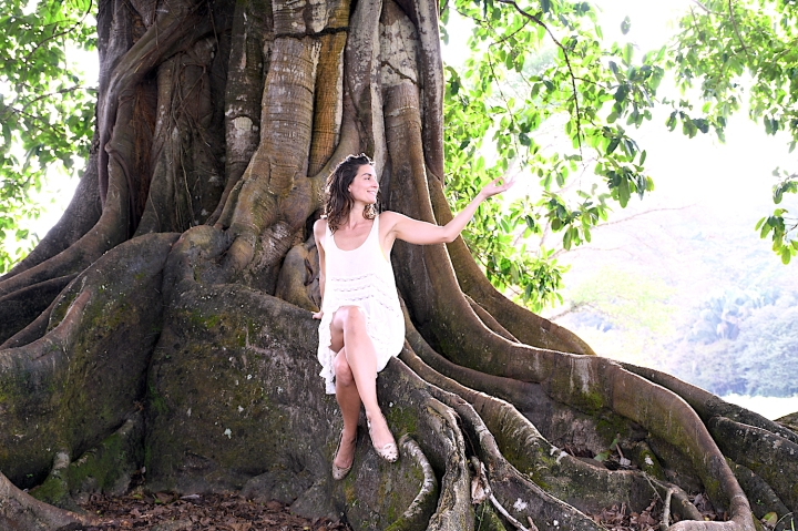 Valentina Roca Costa Rica Osa Peninsula Reflections Under A Tree